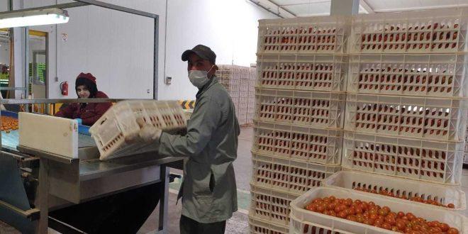 Covid-19-L-autosuffisance-alimentaire-permet-au-Maroc-de-tenir