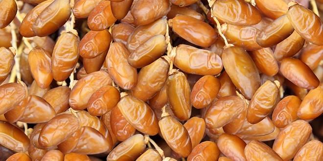 Maroc: Premier importateur des dattesdes Emirats Arabes Unis