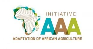 L'Initiative Triple A: «Adaptation de l'Agriculture Africaine»