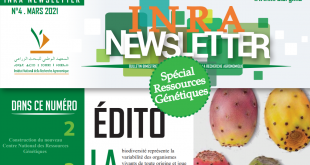inra_newsletter
