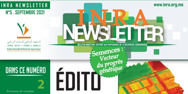 INRA Maroc : la 5ème Newsletter dédiée à la filière des semences est en ligne