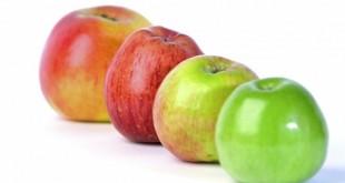 Le saviez-vous? Il existe des milliers de variétés de pommes !