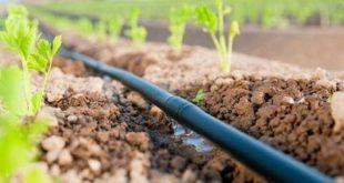 Larache 725 millions dirhams économie en eau irrigation