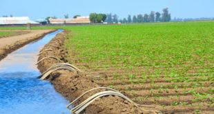 agriculture maroc allemagne