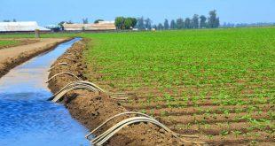 Maroc-L-irrigation-améliore-la-gestion-de-l-eau-face-à-la-sécheresse