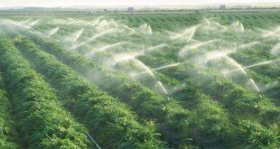 Eau et irrigation : 150 millions d'euros pour la conservation des eaux des plaines du Saïss et du Garet