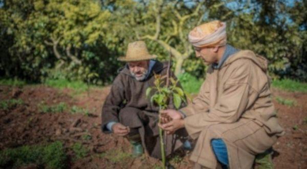 Campagne 2020-2021 accompagnement des agriculteurs est primordial