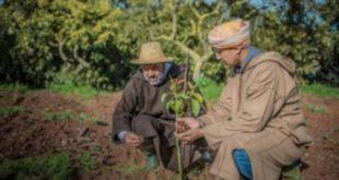 Al Moutmir les petits agriculteurs au centre des différentes initiatives
