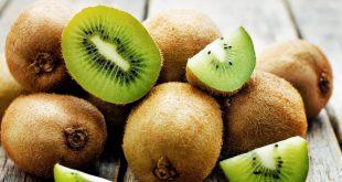 Un seul kiwi fournit la quantité quotidienne nécessaire de vitamine C