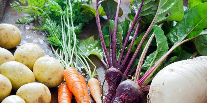 Marrakech-La-production-de-légumes-frôlera-les-543-000-tonnes