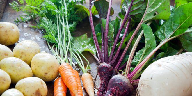 Casablanca-Settat-L-agriculture-a-su-résister-à-la-sécheresse-et-au-Covid-19