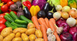 Fruits-et-légumes-Les-exportations-du-Maroc-vers-l-Espagne-en-hausse-de-5-%