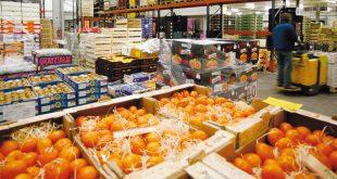 Covid-19: La COMADER appuie le ministère de l'agriculture et rassure les Marocains