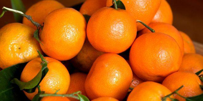 Marché mondial des mandarines : prix, offre, demande