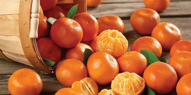 L-Espagne-investit-400000-€-pour-la-promotion-des-oranges-et-mandarines-au-Canada