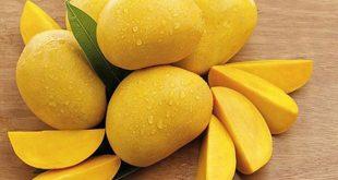Le Pakistan exporte 120.000 tonnes de mangues cette saison