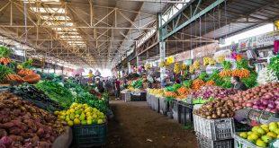 Tétouan : Le marché de gros de fruits et légumes sur de bons rails