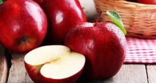 Iran pourrait devenir le leader mondial des exportations de pommes