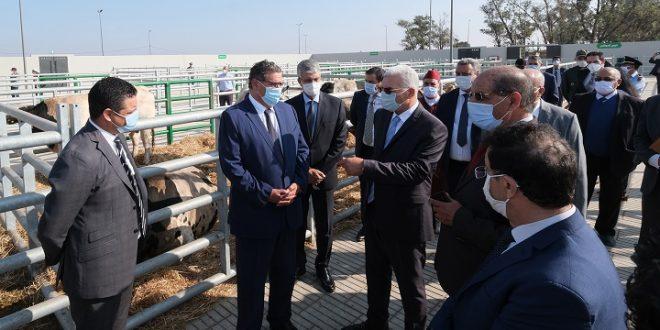 Inauguration d'un marché moderne à bestiaux à Sidi Bennour