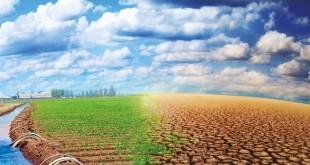 maroc-afrique-partenariat-alimentation-agriculture