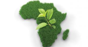 Echange sur l'agriculture durable à Cotonou