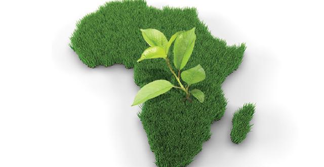 Maroc: Dans le top 5 des champions de l'agriculture en Afrique