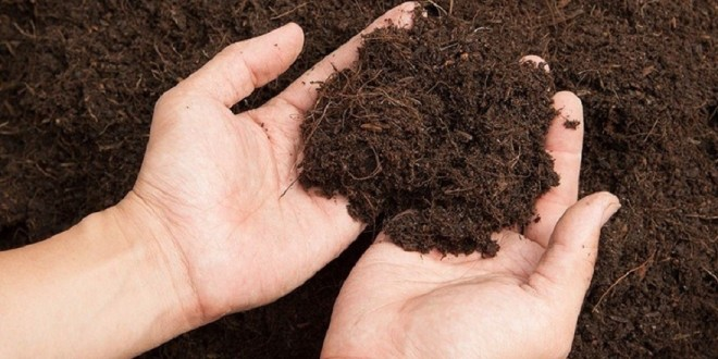 Produits organiques: Rôle et critères d'analyse