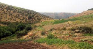 Melkisation renforcement des capacités des agriculteurs