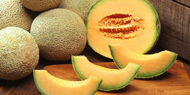 Les melons provoquent une épidémie de salmonelloses dans 10 pays