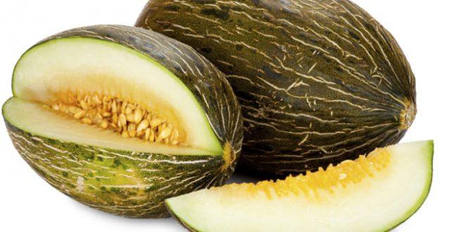 Le Maroc troisième fournisseur en melon Espagne