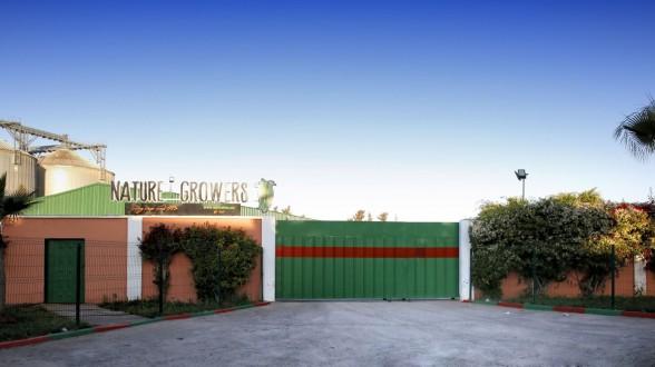 Covid: Un nouveau cluster dans une usine d'emballage à Aït Melloul