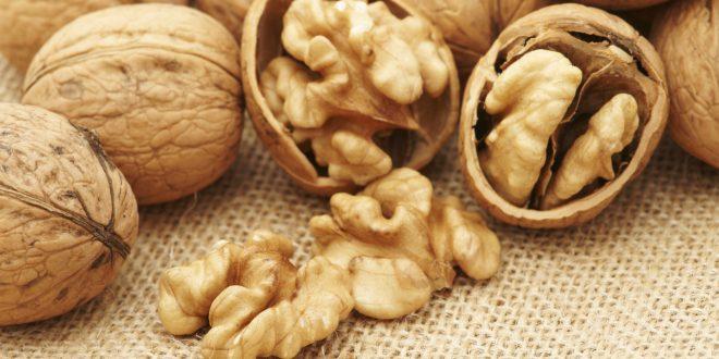 La production mondiale de noix passera à 2,3 millions de tonnes