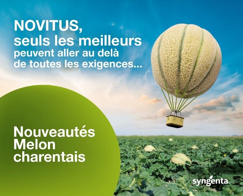 Novitus: alliance de productivité, homogénéité de calibre et conservation