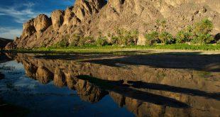 Les oasis dans le sud du Maroc sont en voie de disparition