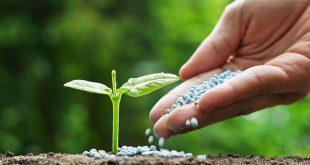fertilisant_maroc