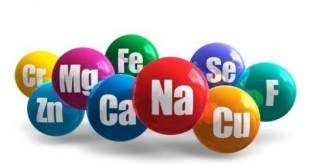 Agrumes: Les oligo-éléments, clé de la réussite