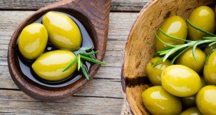 Taounate convertit 9400 ha de céréales en oliviers pour 4000 agriculteurs