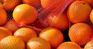 Le Danemark émet une alerte sur les oranges égyptiennes pour excès de pesticides