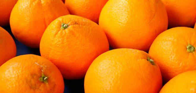 Égypte commence à exporter ses oranges vers le Brésil