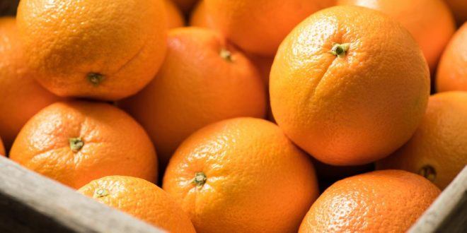Aperçu du marché mondial des oranges