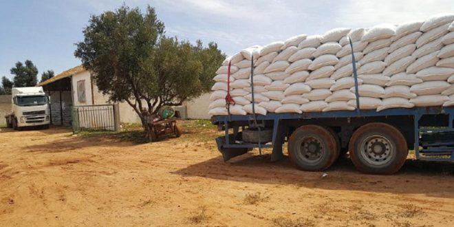 Distribution-de-50.000-quintaux-d-orge-subventionnée-aux-éleveurs-de-Marrakech
