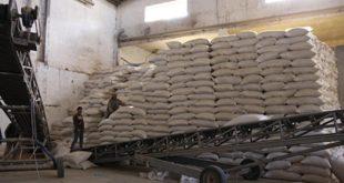 Assa-Zag-20.000-quintaux-d-orge-subventionnée-pour-les-éleveurs