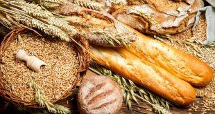 Maroc : la stratégie Génération Green contribuera à la sécurité alimentaire
