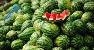 Maroc fruits et légumes Espagne