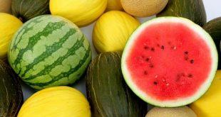 Le temps frais en Europe a réduit la demande pastèques et de melons