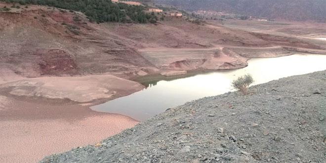 cultures vivrières: Une pénurie d'eau sévit dans le Haouz