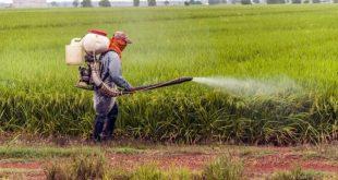 pesticide-autisme-tsa