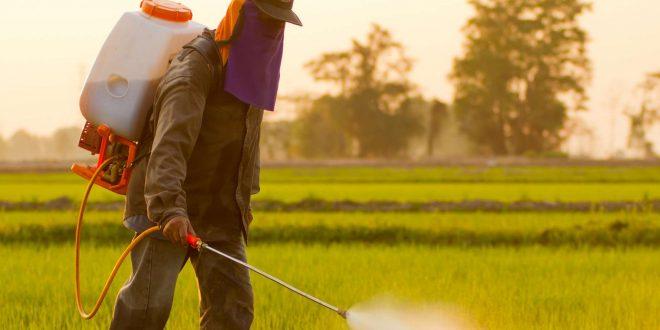 Pesticides : Le président de la Cour des comptes met en garde contre les dangers