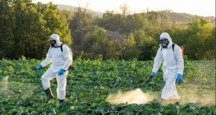 Espagne 44% des fruits et légumes contiennent des résidus de pesticides
