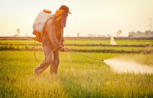 Maroc bientôt interdiction de plusieurs pesticides dont le Paraquat